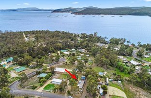 Picture of 22 Fox Avenue, White Beach TAS 7184