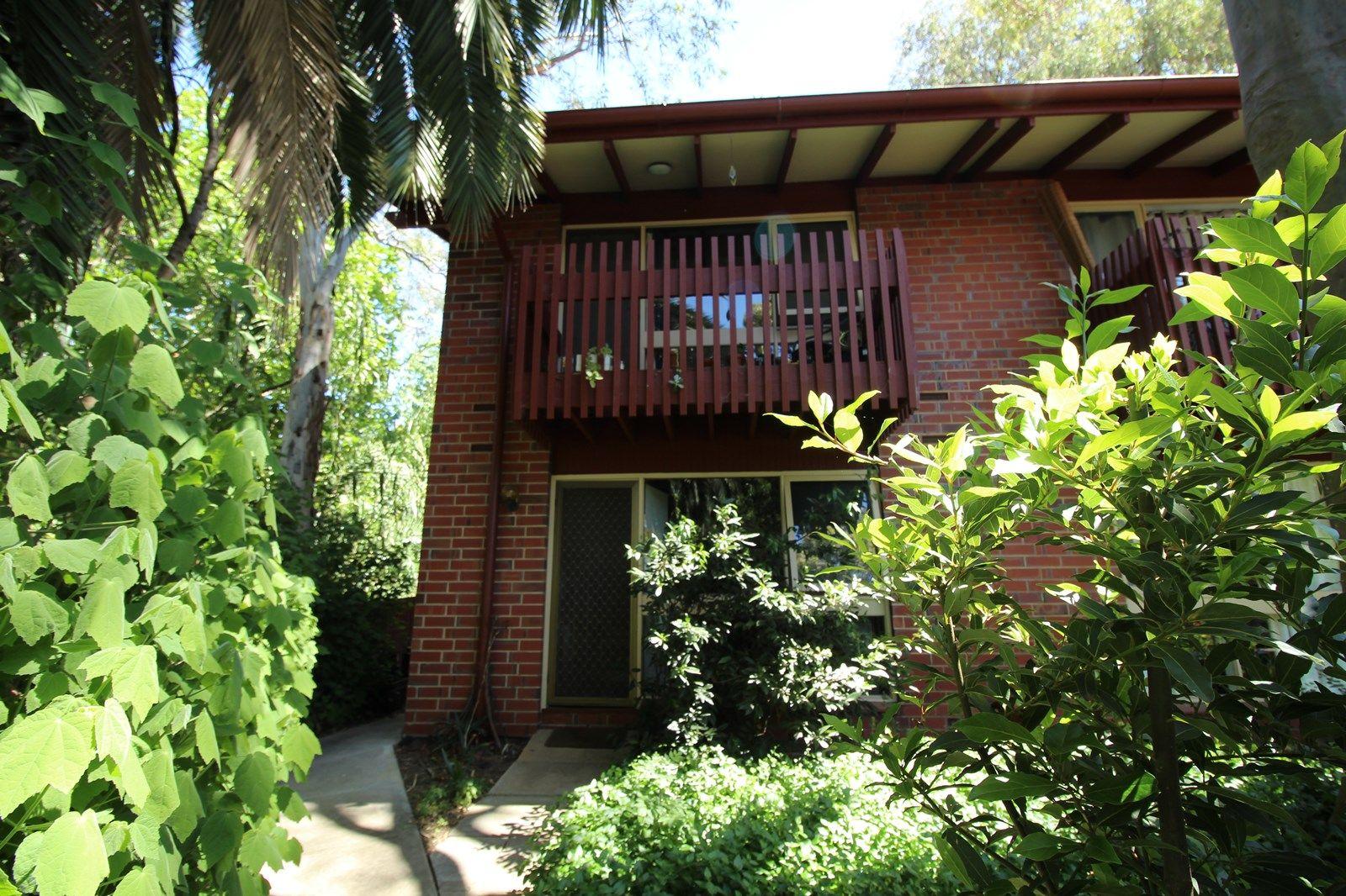 1/36 Trevelyan Street, Wayville SA 5034, Image 1