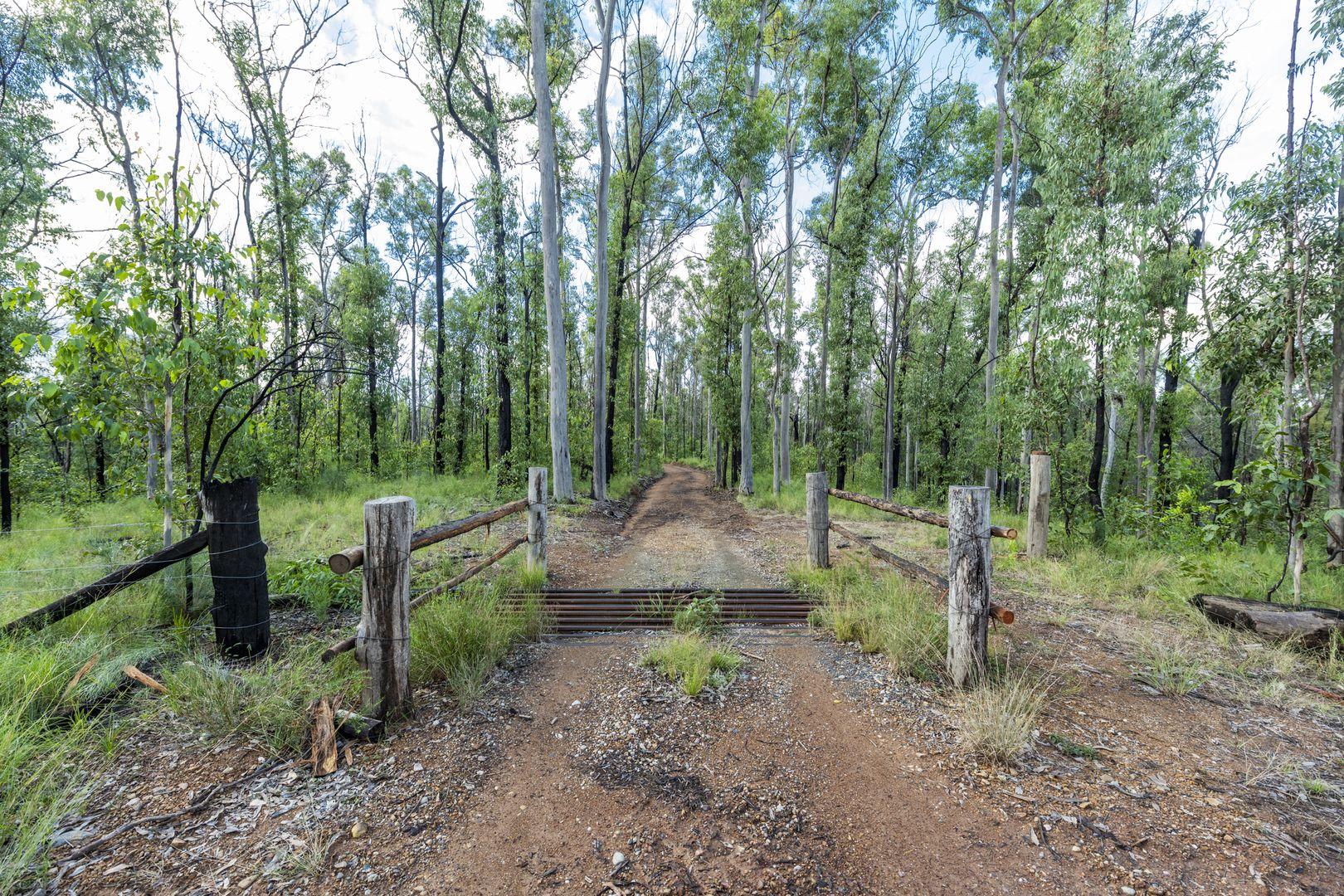 484 Glens Creek Road, Nymboida NSW 2460, Image 2