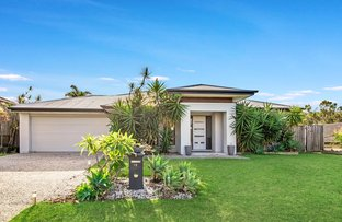 Picture of 12 Candlebark Circuit, Upper Coomera QLD 4209