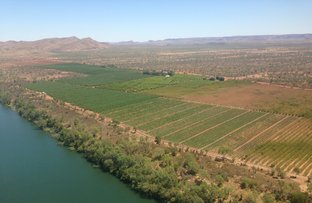 Picture of Kimberley Produce, Lots 11 & 601 Weero Road, Kununurra WA 6743