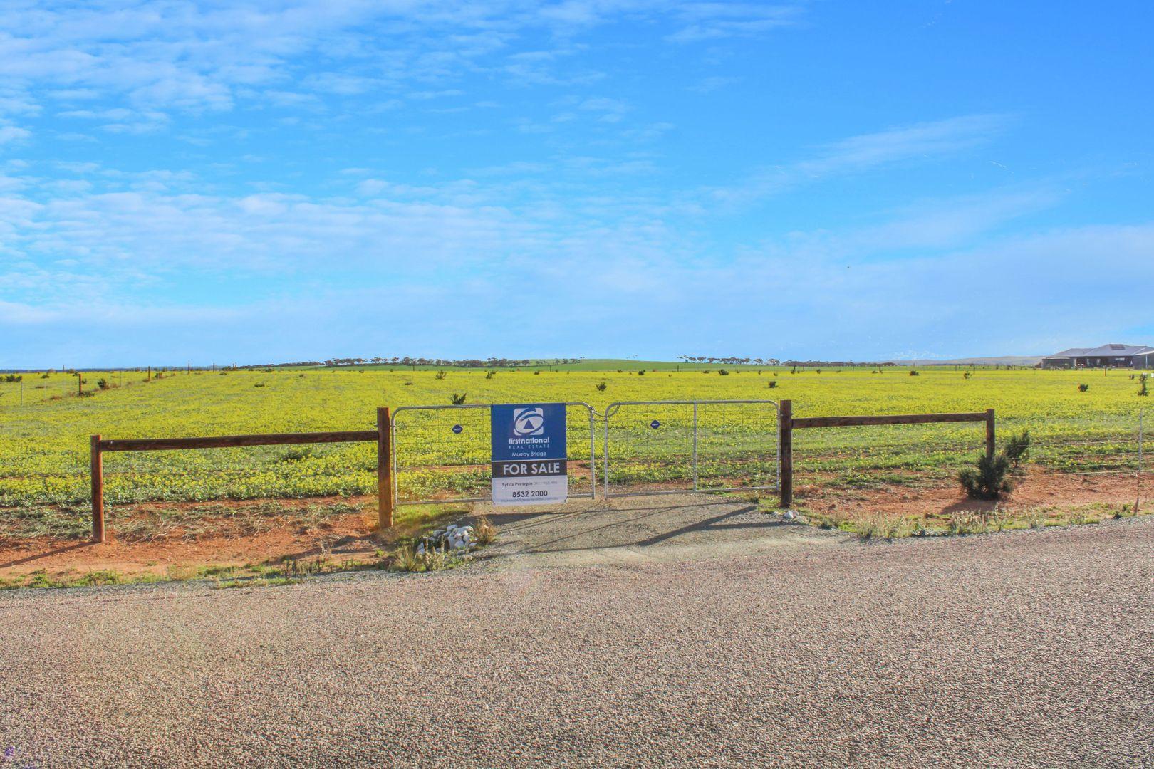 38 Barley Drive, Mannum SA 5238, Image 0