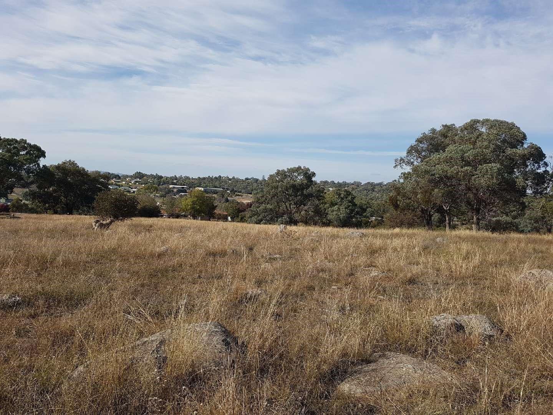 39 Queen Street, Molong NSW 2866, Image 0