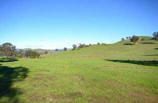 Picture of Lot 2/502 Monkey Gully Road, Mansfield VIC 3722