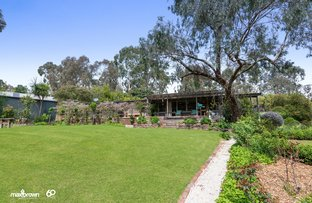 Picture of 50 Haag Road, Seville VIC 3139