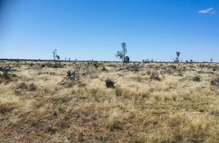 Picture of 29351 Mitchell Highway, Charleville QLD 4470