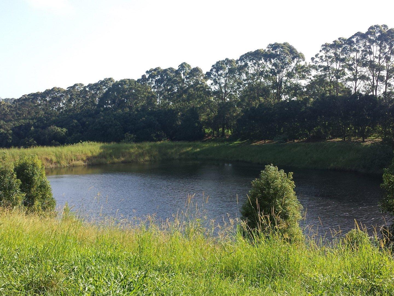 Lot 2./1147 Bruxner Highway, Wollongbar NSW 2477, Image 0