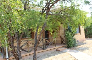 Picture of 53 Tulip Street, Violet Town VIC 3669
