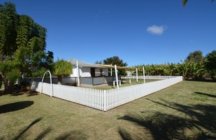 Picture of 208 South River Road, Carnarvon WA 6701