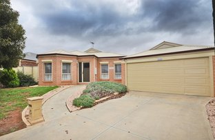 Picture of 10 Rosedale Court, Buronga NSW 2739