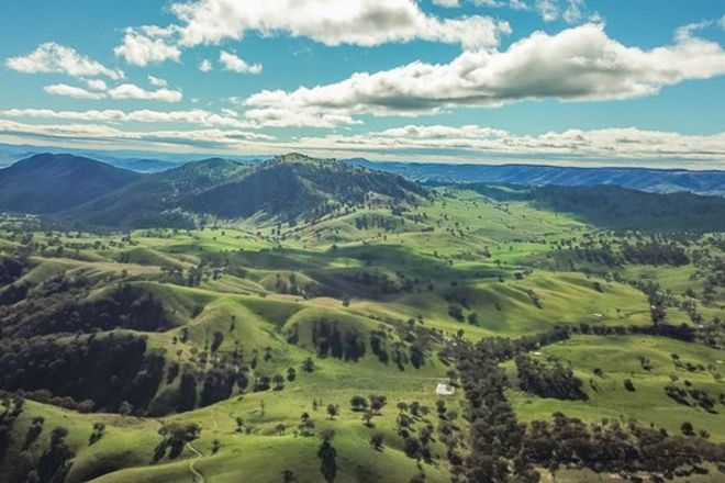 Picture of 987 Wee Jasper Road, TUMUT NSW 2720