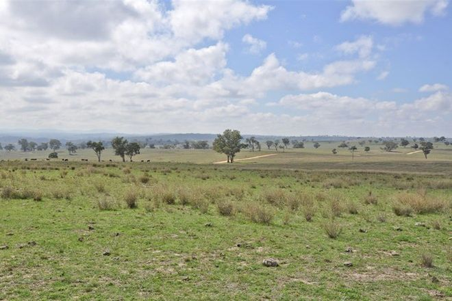 Picture of . 'Summerhill Aggregation', Summerhill Rd, CASSILIS NSW 2329