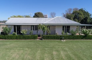 Picture of 109 Redferns Lane, Oxley VIC 3678