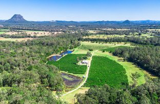Picture of 267 Louis Bazzo Drive, Pomona QLD 4568