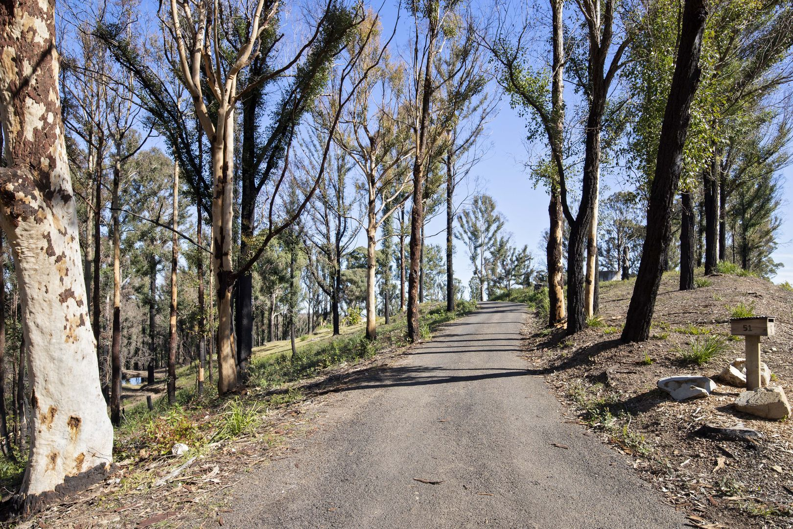 51 Ridge Avenue, Malua Bay NSW 2536, Image 1
