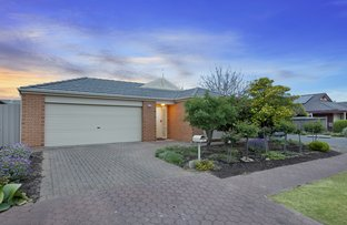Picture of 3 Rockingham Drive, Lightsview SA 5085