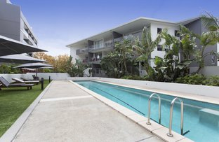 Picture of 125/95 Clarence Road, Indooroopilly QLD 4068