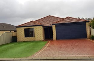 Picture of 5 Treemartin Place, East Cannington WA 6107