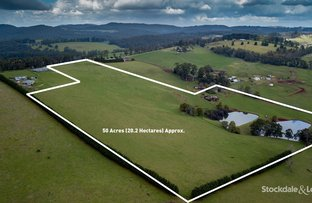 Picture of 455 Ure Rd, Gembrook VIC 3783