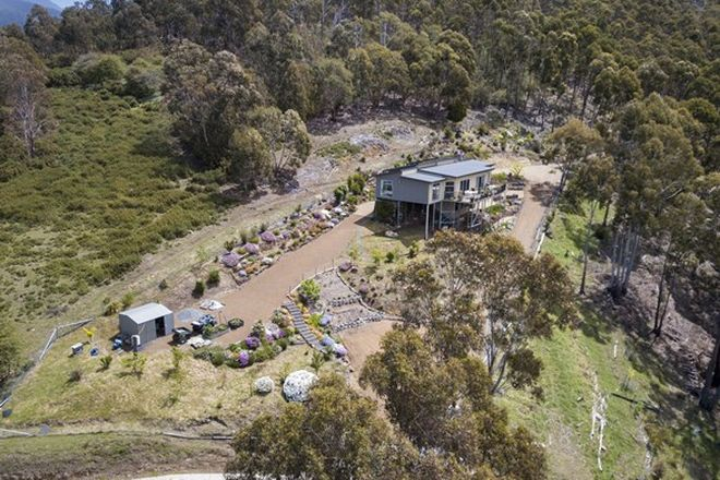 Picture of 49 Louden Street, SOUTH HOBART TAS 7004