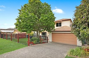 Picture of 8 Ulrich Street, Upper Coomera QLD 4209
