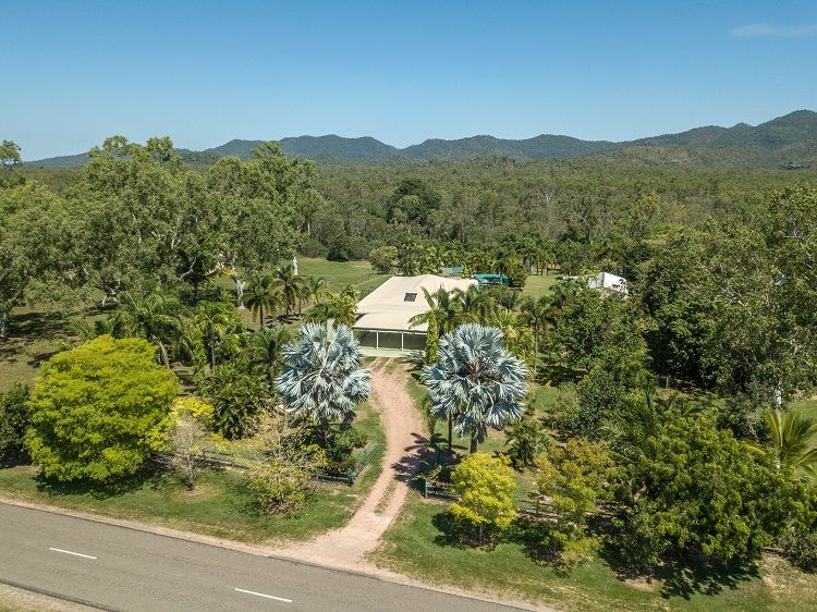 440 Forestry Road, Bluewater Park QLD 4818, Image 0