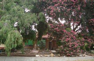 Picture of 10 Ellen Street, Tea Tree Gully SA 5091