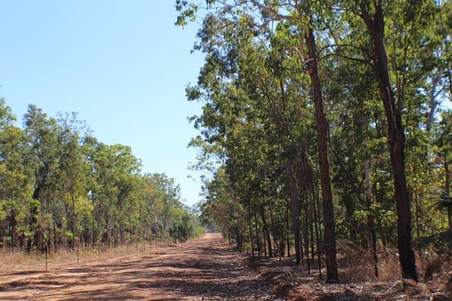 Picture of 530 Daly River Road, ROBIN FALLS NT 0822