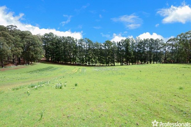 Picture of 870 Gembrook Road, HODDLES CREEK VIC 3139