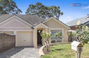 Picture of 1A Broughton Avenue, Mitcham SA 5062