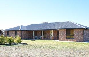 86 KAMILAROI ROAD, Gunnedah NSW 2380