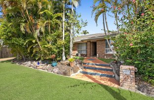 Picture of 6 Cambuca Court, Tewantin QLD 4565