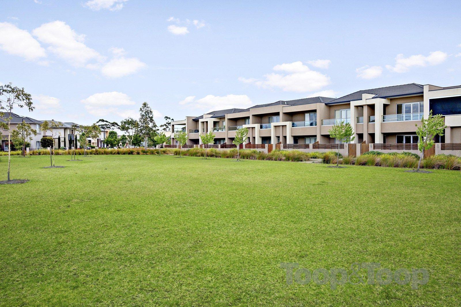 16 Carbone Terrace, St Clair SA 5011, Image 1