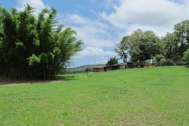 Picture of 91 Yandina Bli Bli Road, YANDINA QLD 4561