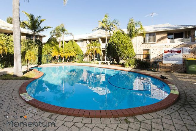Picture of 1/26 South Street, KARDINYA WA 6163