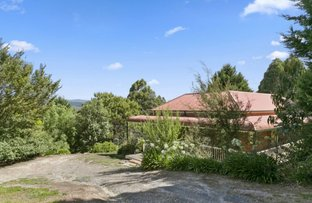 Picture of 7 Buxton Rise, Buxton VIC 3711