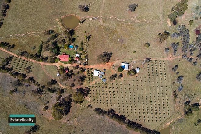 Picture of 125 Caseys Rd, BREDBO NSW 2626