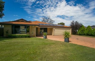 Picture of 19 Monaltrie Loop, Carramar WA 6031