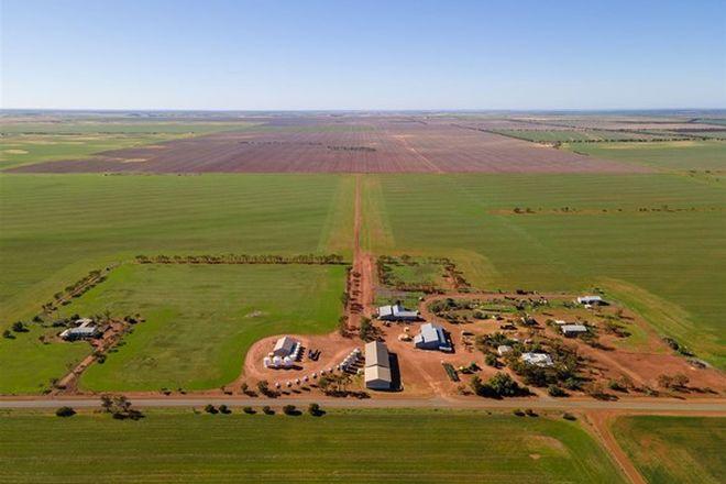 Picture of Gurrady Farms, YUNA WA 6532