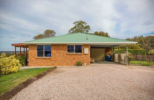 Picture of 68 Ansons Bay Road, St Helens TAS 7216