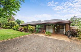 Picture of 138 Cottams Road, Batlow NSW 2730