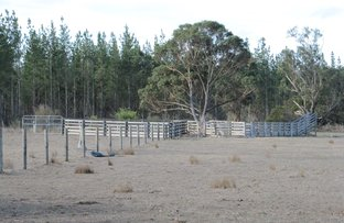 Picture of 1 Nicholls Road, Longford VIC 3851