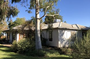 Picture of 490 Anzac Road, Robinvale VIC 3549