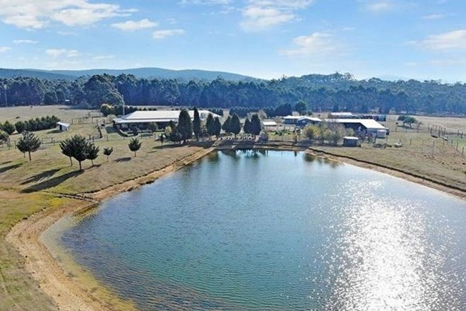 Picture of 38 Tuisk Road, SPARGO CREEK VIC 3461