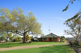 Picture of 124 Mansfield Road, Benalla VIC 3672