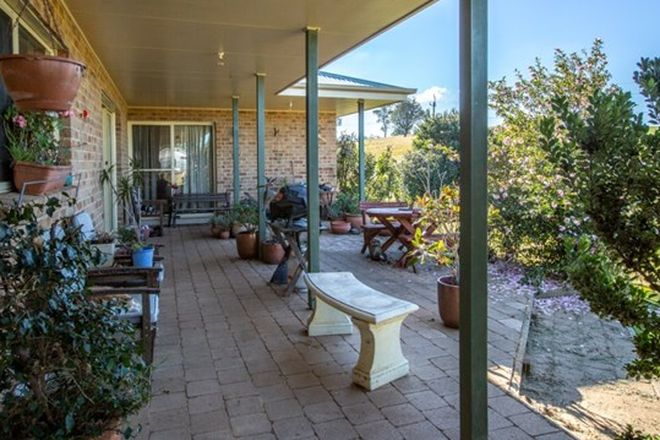 Picture of 798 West Kameruka Rd, CANDELO NSW 2550