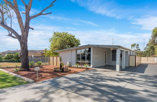 Picture of 14 Ludlands Street, Morley WA 6062