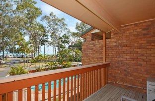 Picture of 7/436 Esplanade, Torquay QLD 4655