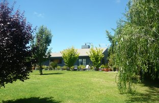 Picture of 28 O'Brien Ave, Berridale NSW 2628