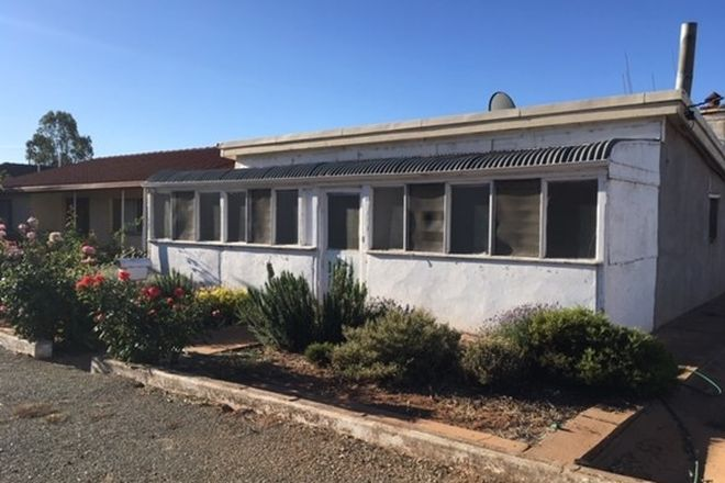 Picture of 17 Dutton St, JAMESTOWN SA 5491